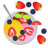 Colorful balls of ice cream with fruits and berries. Flat lay style. Vector illustration vector illustration