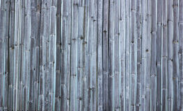 Colorful of bamboo fence. Royalty Free Stock Photo