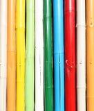 Colorful bamboo wall Royalty Free Stock Image