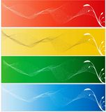 Colorful banner. White flowers and colorful banners Royalty Free Stock Image