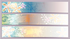 Colorful banners with floral elements Stock Photography
