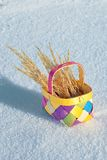 Colorful Basket Stock Images