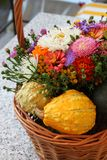 Colorful Basket Royalty Free Stock Images