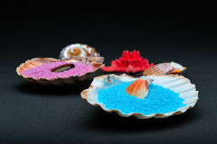 Colorful bath salt crystals in seashells. On black background ad a red starfish royalty free stock photography