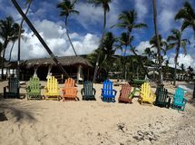 Colorful beach chairs, palm trees,  and beautiful sand beach royalty free stock images