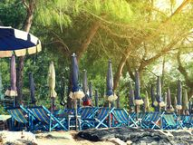 Colorful beach chairs and umbrellas for tourism relax in vocation. Colorful beach chairs and umbrellas with sunny light for tourism relax in vocation at Cha-Am Royalty Free Stock Photo