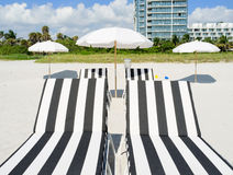Colorful beach lounge chairs Royalty Free Stock Image
