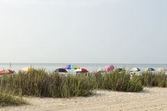 Colorful Beach Umbrellas at Myrtle Beach. The colorful beach umbrellas are out on a hazy sunny day in Myrtle Beach,SC Royalty Free Stock Photos