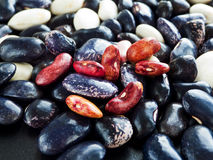 Colorful beans Royalty Free Stock Image