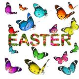 Colorful beautiful butterflies and word EASTER Stock Image
