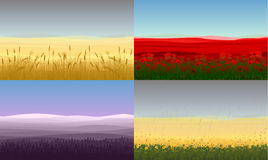 Colorful Beautiful Field Landscapes Set Royalty Free Stock Photos