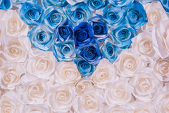Colorful beautiful rose flower Paper background Stock Images