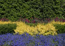 Colorful bed Dallas Arboretum and Botanical Garden. Pictured is a colorful bed of green, red, yellow and blue at the Dallas Arboretum and Botanical Garden in Stock Photography