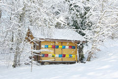 Colorful beehive in the winter Stock Photo