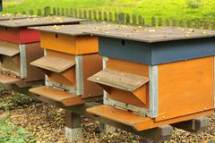 Colorful beehives Stock Images