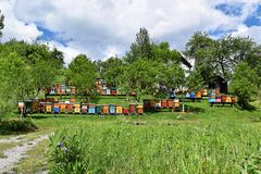 Beekeeping in rural yard during spring. Colorful beehives in a countryside yard in eastern Europe during springtime royalty free stock image