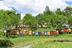 Beekeeping in rural yard during spring. Colorful beehives in a countryside yard in eastern Europe during springtime stock photos