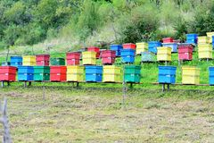 Colorful beehives Stock Photos