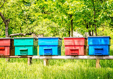 Colorful Beehives in a Row Stock Photography