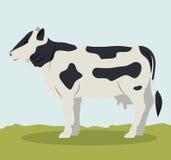 Colorful beet animal design. Beet icon. Livestock animal life nature and fauna theme. Colorful design. Vector illustration Stock Image