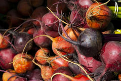 Colorful Beets Royalty Free Stock Image