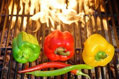 Colorful Bell and Chile peppers on the BBQ cast iron Grill Stock Photography