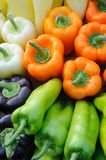 Colorful bell peppers Royalty Free Stock Image