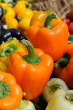 Colorful bell peppers Royalty Free Stock Images
