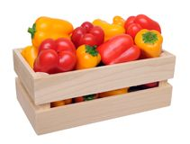 Colorful bell peppers in case Royalty Free Stock Photography