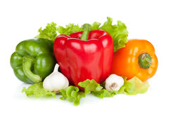Colorful bell peppers with garlic and lettuce Royalty Free Stock Photo