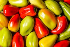 Colorful bell peppers, natural background. Colorful bell peppers as a natural background royalty free stock photo