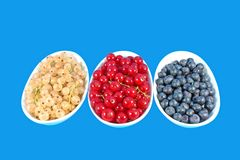 Colorful berries Royalty Free Stock Photography