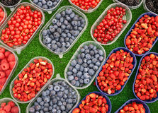 Colorful berries at the market. Different kinds of berries in small boxes at the market stock photography