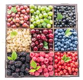 Colorful berries in wooden box on white background. Top view.  stock photography