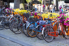 Colorful bicycle Stock Image
