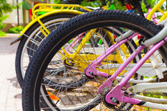Colorful bicycles stand in row on a parking lot Stock Photos