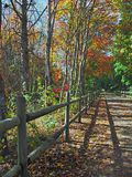Colorful Bike Path Stock Image