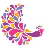Colorful Bird Stock Image