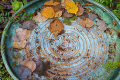 Colorful bird bath with spiral design from above. Stock Photography
