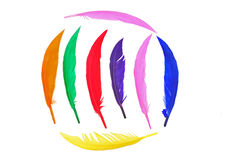 Colorful bird feather Stock Photo