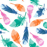 Colorful Bird Feathers Royalty Free Stock Photos