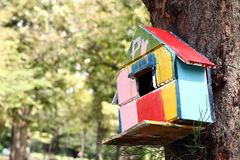 Colorful bird house. On the tree royalty free stock photos
