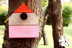 Colorful bird house. On the tree stock photos
