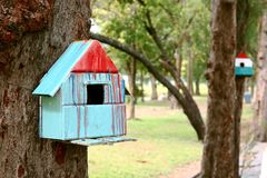 Colorful bird house. On the tree royalty free stock photo