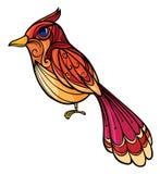A colorful bird Stock Photo