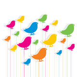 Colorful bird pattern background design Stock Photography