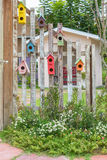 Colorful birdcages hanging Stock Photo