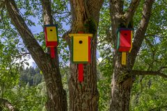 Colorful birdhouse royalty free stock images