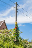 Colorful birdhouses mounted on a power pole Royalty Free Stock Image