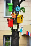 Colorful birdhouses on a tree Stock Images